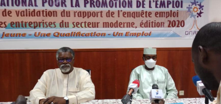 Tchad : l'ONAPE lance l'atelier de validation de l'enquête sur le secteur moderne