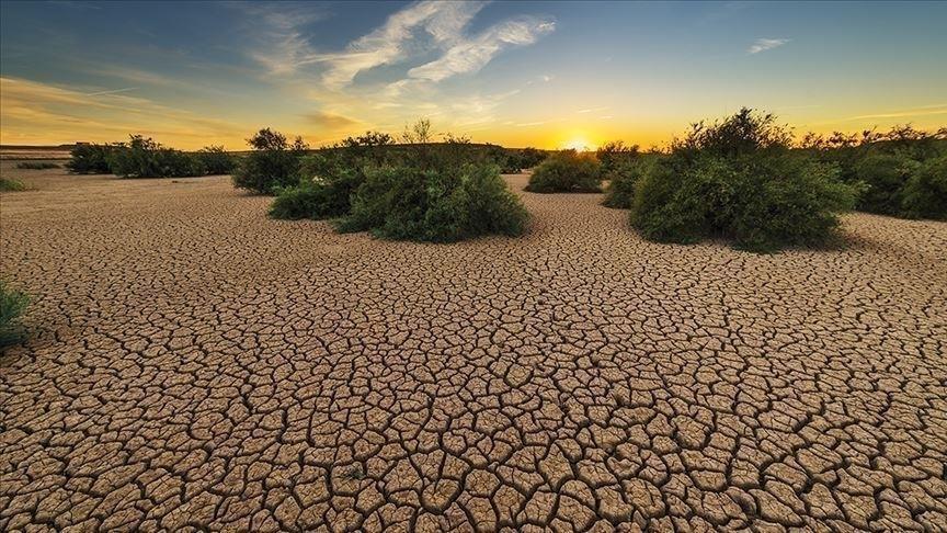 Changement climatique : l'engagement de la société civile africaine face au Covid-19
