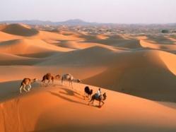 Le Maroc terre d'accueil et de tolérance