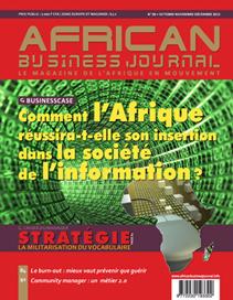 Business Case : Comment l'Afrique réussira-t-elle son insertion dans la société de l'information ?