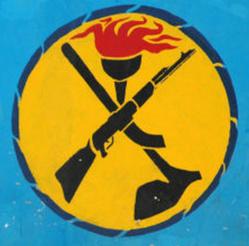 La représentation du MPS en Belgique célèbre l'entrée du Tchad au Conseil de Sécurité de l'ONU