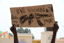 BANGUI. Un manifestant brandit une pancarte, quelque jours avant la prise de pouvoir par la Séléka. Crédit photo : Diaspora media.