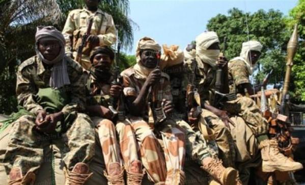 Des rebelles de la Séléka en Centrafrique. Crédit photo : Sources