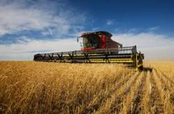 Réformer les politiques du secteur agroalimentaire en Afrique