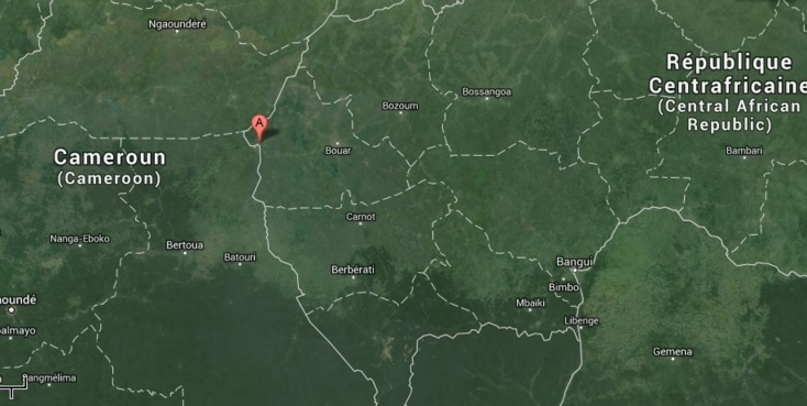 RCA : Le HCRRN affirme avoir été attaqué à Beloko, une dizaine d'ex-Séléka abbatus