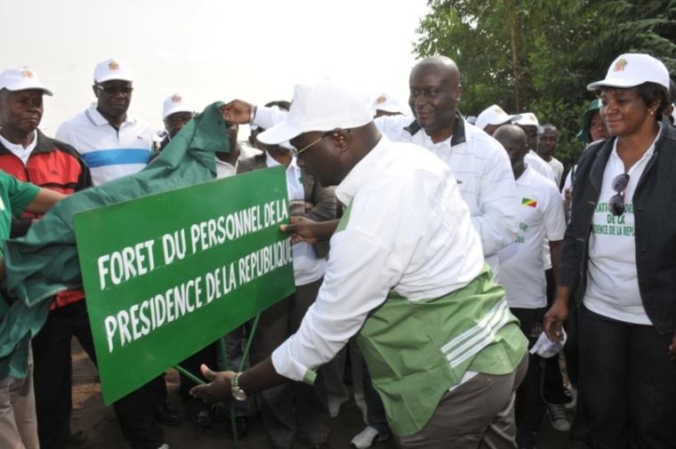 """Initiative """" campagne des plantations des institutions"""" au Congo: la présidence plante 1428 Eucalyptus"""