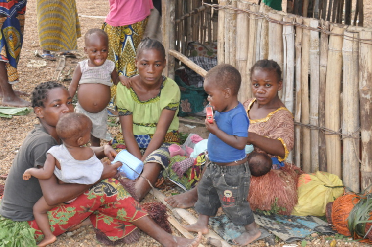 3ème édition du FIPAC au Congo : La création d'un ministère en charge de la question autochtone vivement recommandée