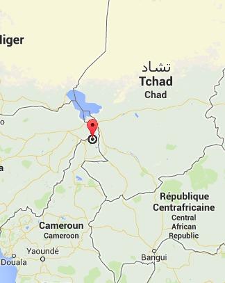 Cameroun : Nouvelle attaque de Boko Haram près de la frontière tchadienne