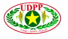 RCA : L'UDPP exclut un militant de son parti
