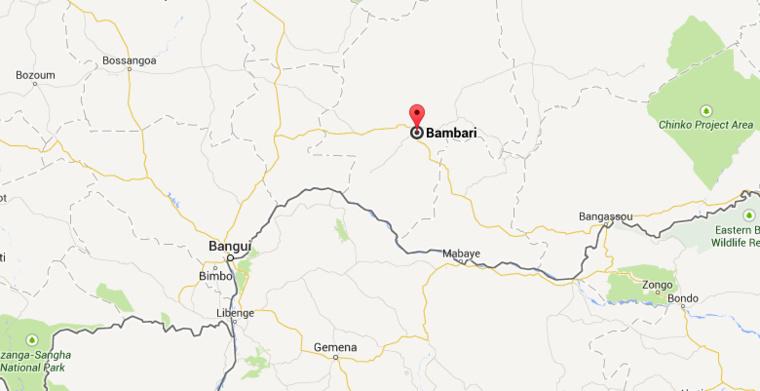 """RCA : Manifestation à Bambari, Sangaris """"a tiré sur la population"""" (Porte-parole Séléka)"""