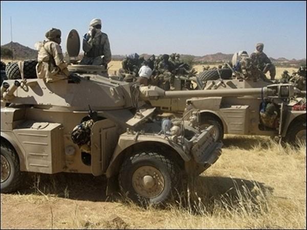 L'armée tchadienne se bat avec des armes moins sophistiquées que celles des nigérians (presse nigériane)