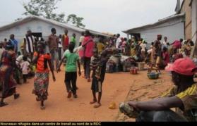 Centrafrique : Présence des Forces internationales, impact nul, plus de 30.000 centrafricains ont fui en RDC depuis janvier 2015