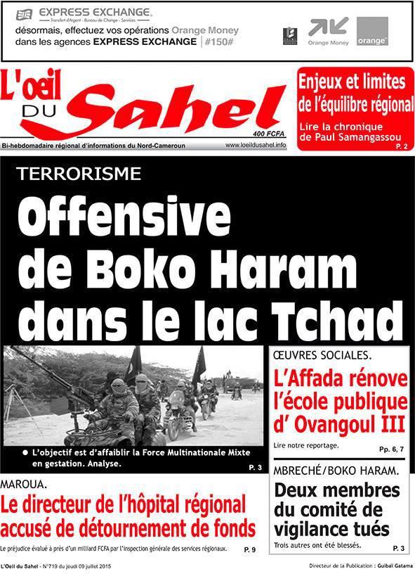 Boko Haram tente d'affaiblir une force multinationale en gestation