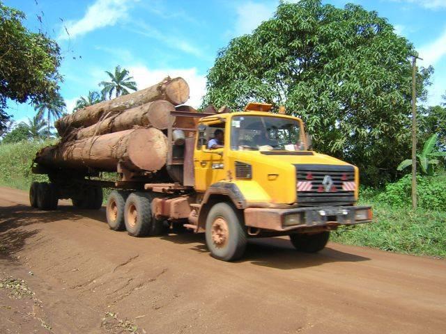 Un camion transportant des grumes au Cameroun.