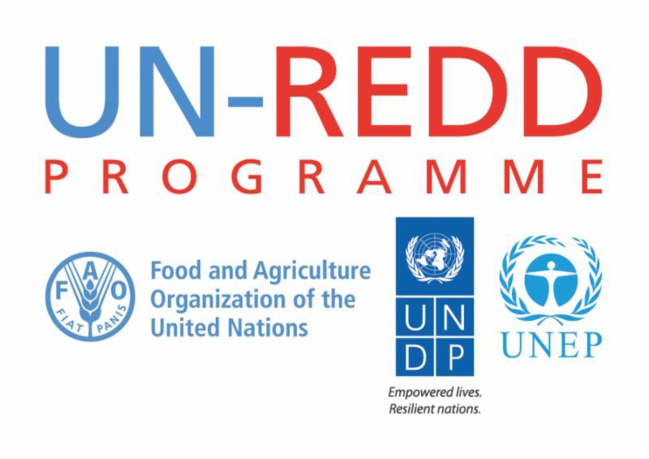 UN-REDD Programme launches upgraded website to reflect 2016-2020 strategic framework and post-Paris Climate Agreement environment