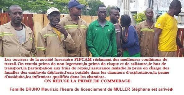 Cameroun:Pourquoi le BUREAU VERITAS  ne doit  pas accorder une extension du certificat OLB à la FIPCAM