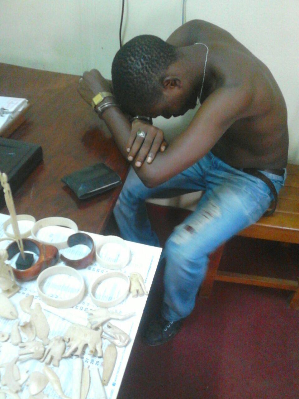 Douala: Un trafiquant d'ivoire arrêté