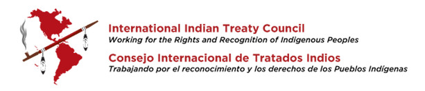 The International Indian Treaty Council (IITC) condemns the use of Deadly Force by Law Enforcement against Standing Rock Water Protectors, calls for additional UN action