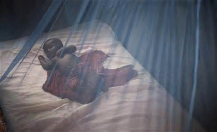 Des leaders africains salués pour les progrès de leur pays en matière de paludisme