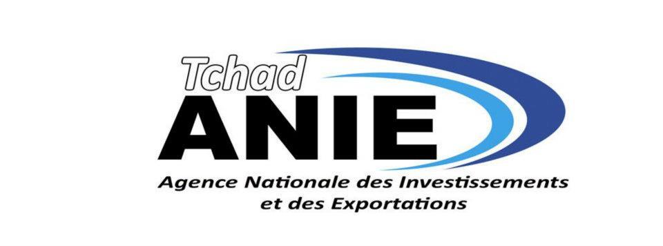 Tchad : Le directeur de l'Agence des Investissements et des exportations remplacé