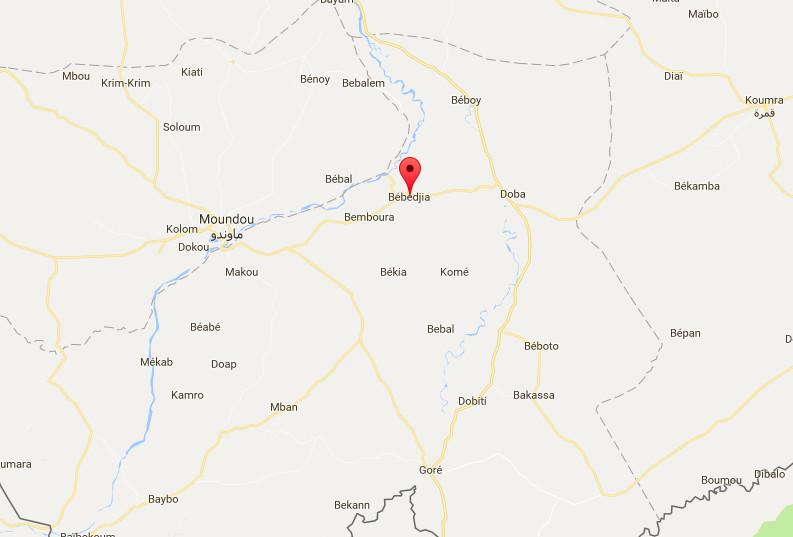 Tchad : A Bébédjia, les élèves en visite guidée dans les commerces