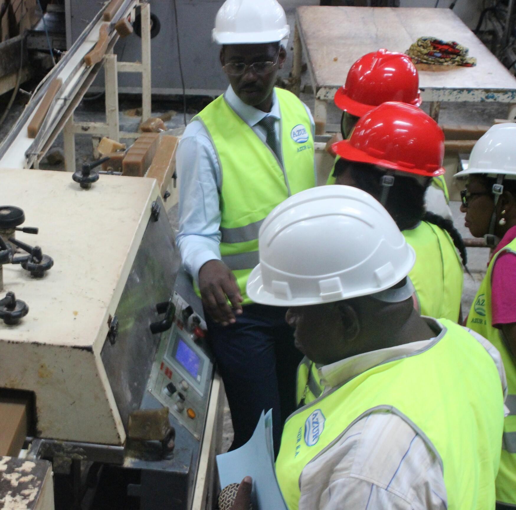Cameroun/Huile de palme: L'assainissement suit son cours