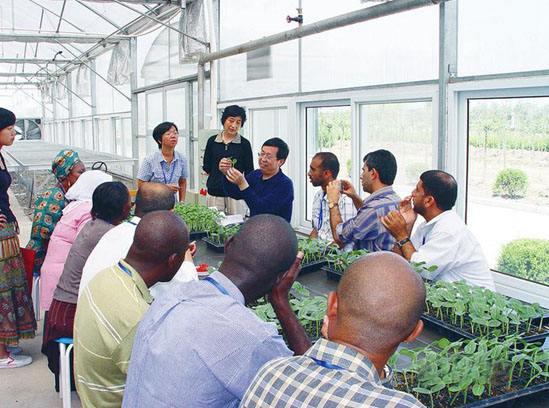 'Belt and Road' initiative speeds up Kazakhstan's agricultural modernization