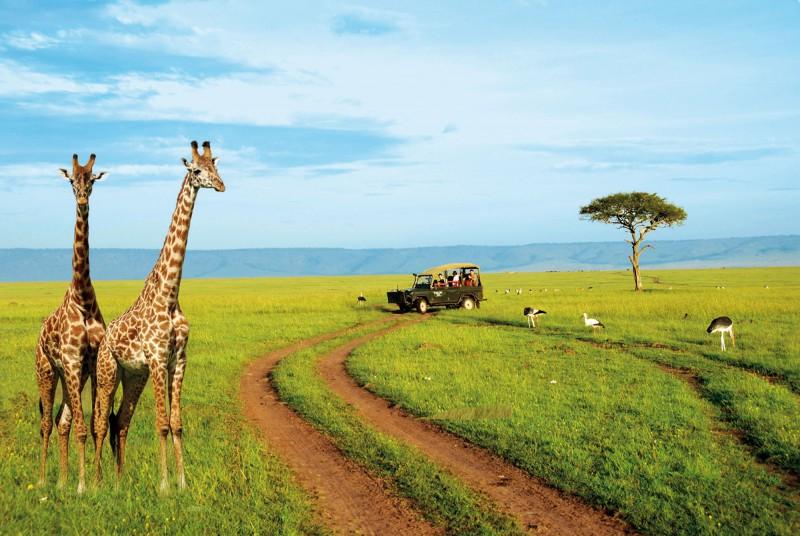 Paysage en Afrique. Crédits : Sources