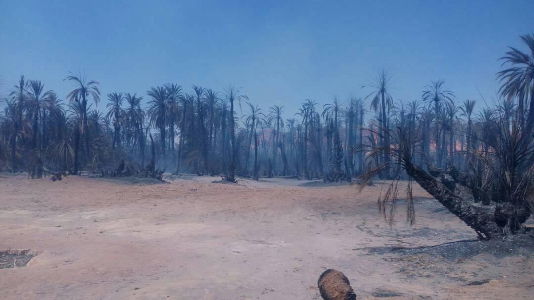 Tchad : L'Association Nima Tomba appelle a l'aide pour secourir la population sinistrée de Gouro