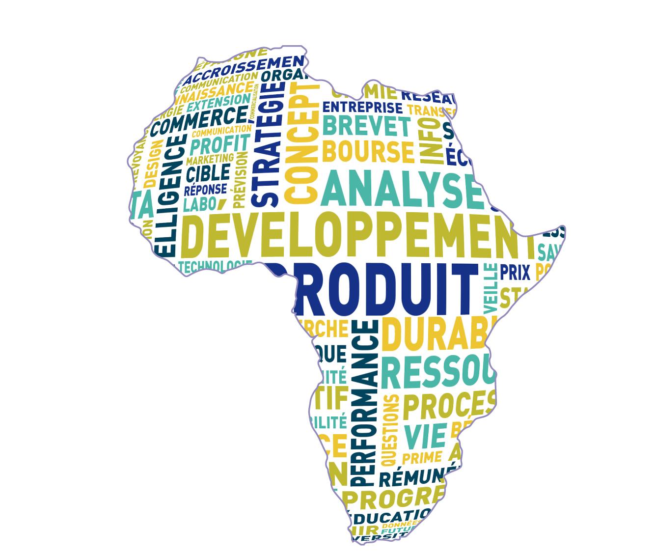 La première étude consacrée aux sociétés africaines à vocation mondiale