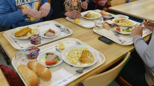 France : Le maire Front national (FN) de Beaucaire va imposer des menus avec du porc dans les cantines de sa commune