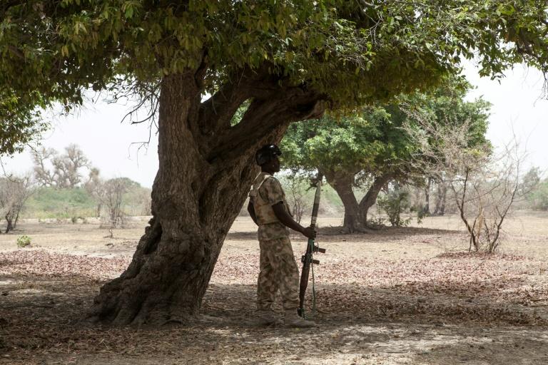 Un soldat nigérian en opération dans le nord-est du pays, près de Damasak, le 25 avril 2017 / © AFP/Archives / Florian PLAUCHEUR