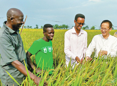 China to deepen agricultural cooperation with Africa