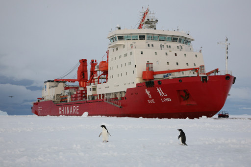 The Chinese research icebreaker Xuelong is in ice and snow. (Photo from the official website of the State Oceanic Administration)