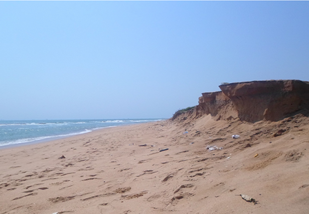 Une zone côtière. Crédits photo : sources