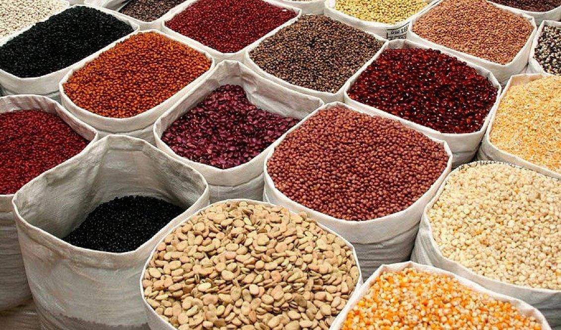 Le secteur de la semence. Crédits photo : DR