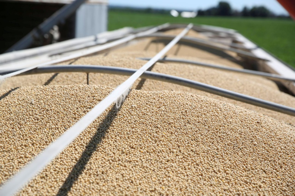 US farmers face risk of losing Chinese market: official
