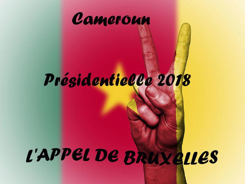 Présidentielle 2018 au Cameroun : la diaspora lance un appel depuis Bruxelles