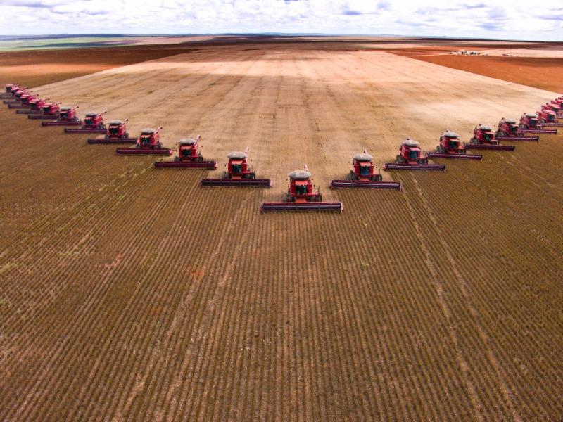 Mass soybean harvesting at a farm in Brazil.