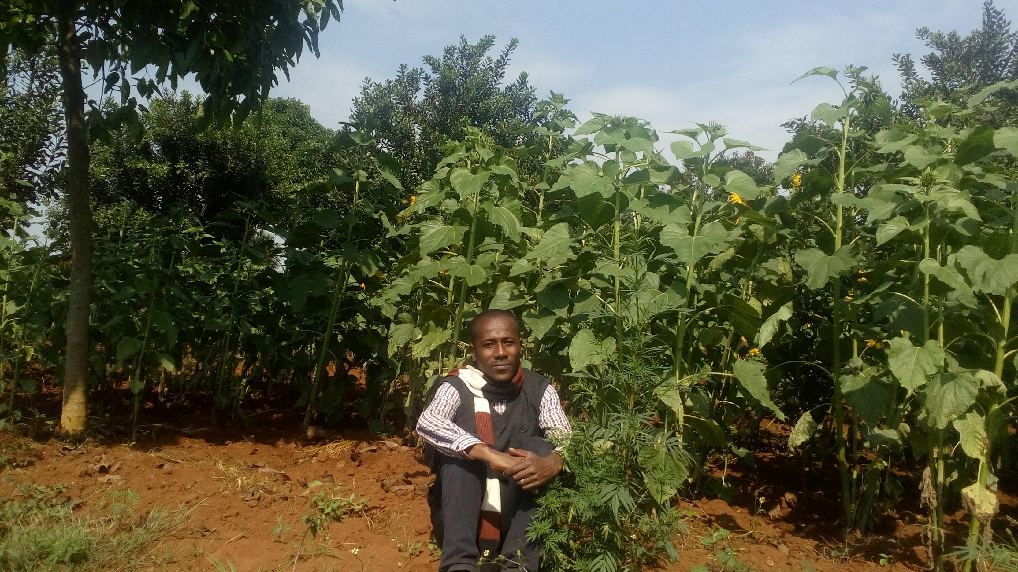 Tchad : tirons le meilleur du salon de l'agriculture SAFAGRI