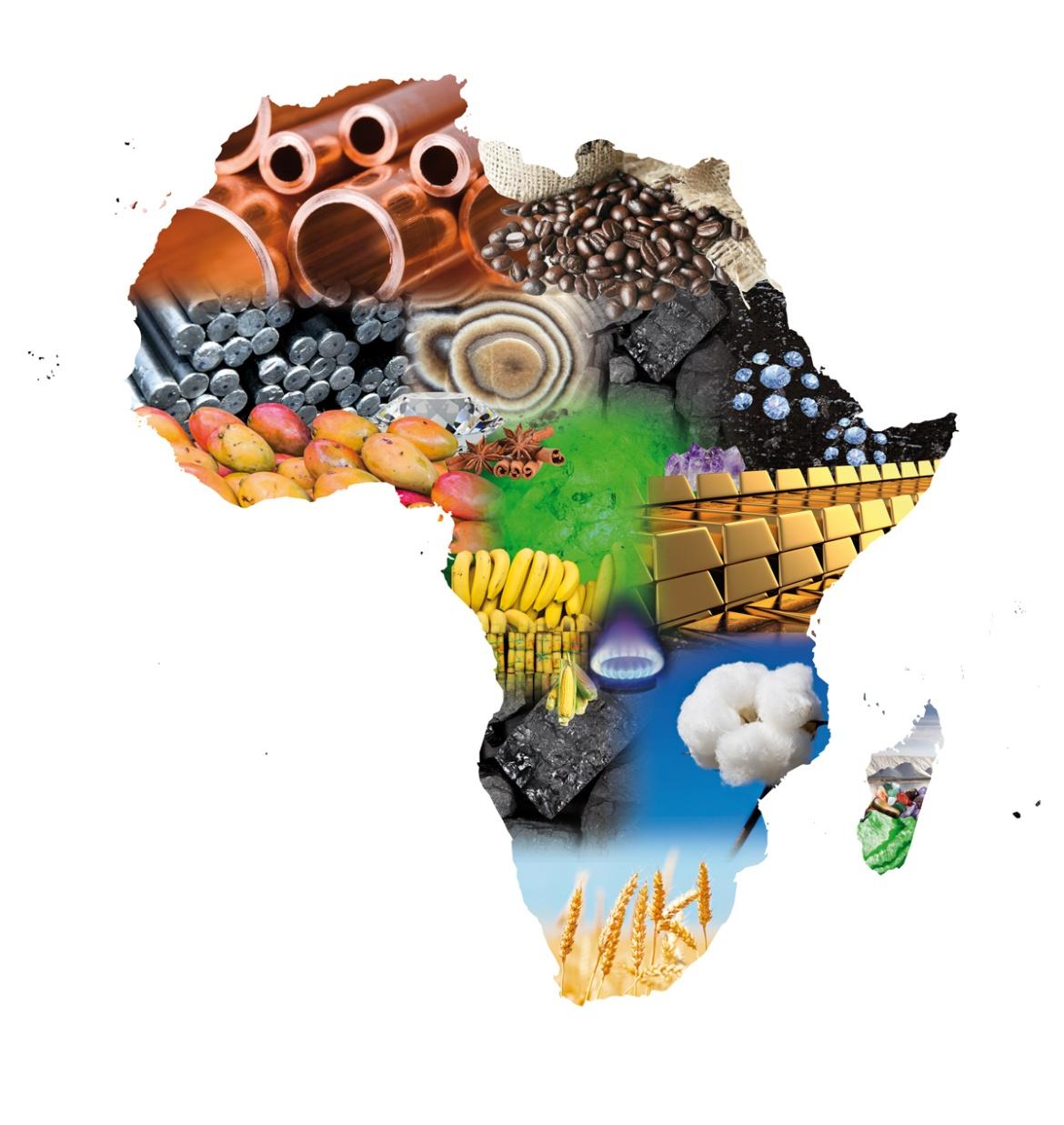 Présentation du rapport « Perspectives économiques en Afrique 2019 » au 32ème Sommet de l'UA