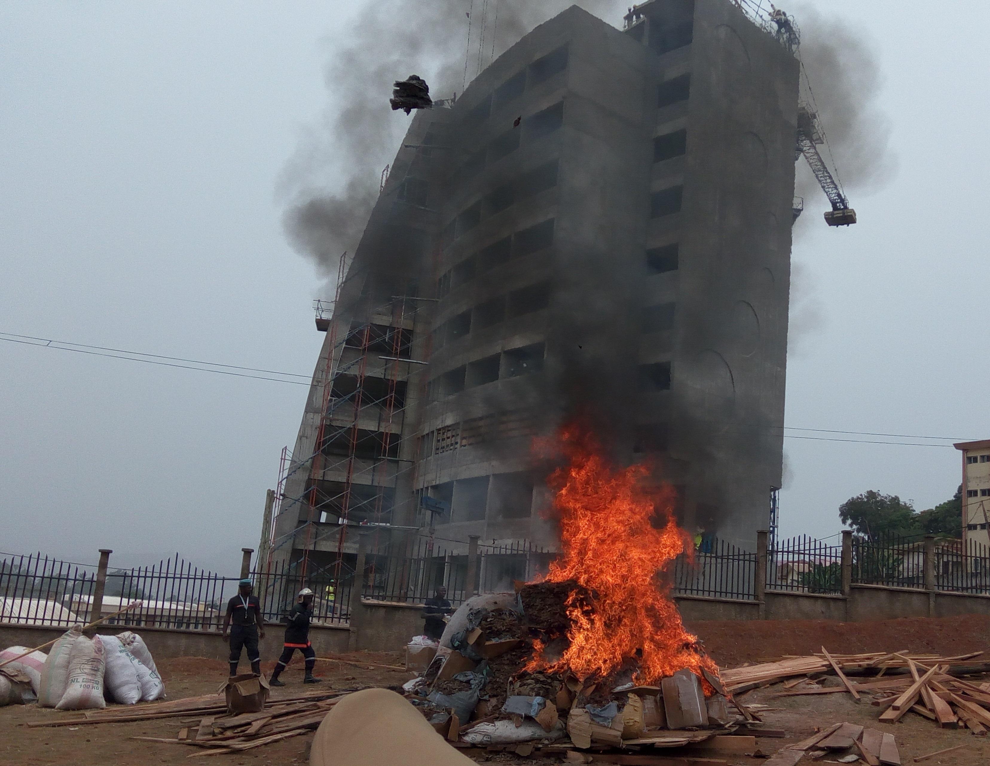 Trois tonnes d'écailles de pangolin détruites à Yaoundé par des agents de la protection de la faune.
