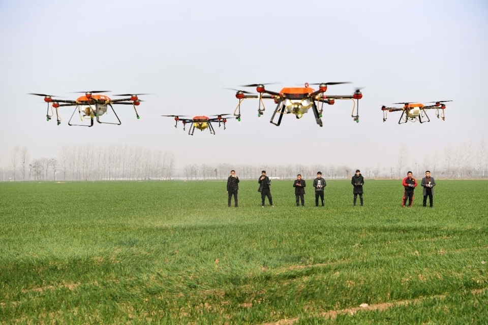 Farmers use drones to spray chemical herbicides in a wheat field in Yanggang village, Shihe town, Qiaocheng district of Bozhou city, eastern China's Anhui province, March 4,2019. (Photo by Liu Qinli from People's Daily Online)