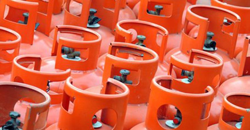 Des bouteilles de gaz. ©DR