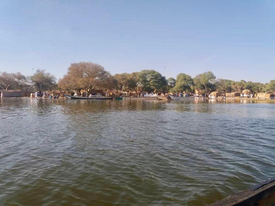 Rives du Lac Tchad. © Alwihda Info