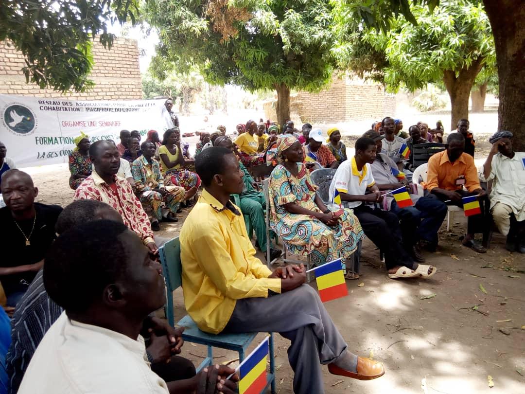 """Tchad : une """"bouffée d'oxygène"""" pour les paysans après l'accord sur le coton. © DR"""