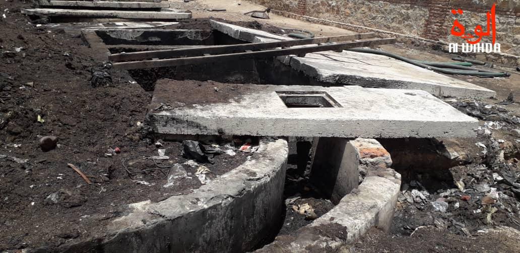 Tchad : des conditions d'hygiène dangereuses à l'abattoir d'Abéché. © Alwihda Info