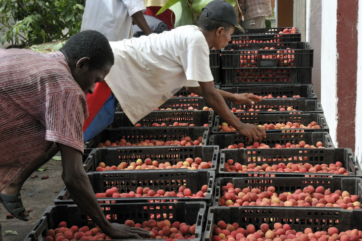 Des commerçants à Madagascar. © AVSF