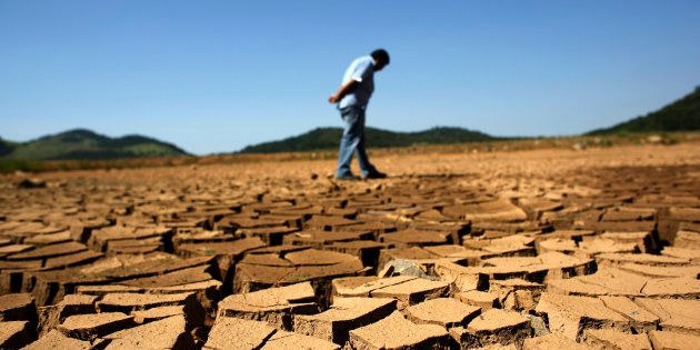 Governments must unite behind the science to transform land use to avert climate breakdown. © DR