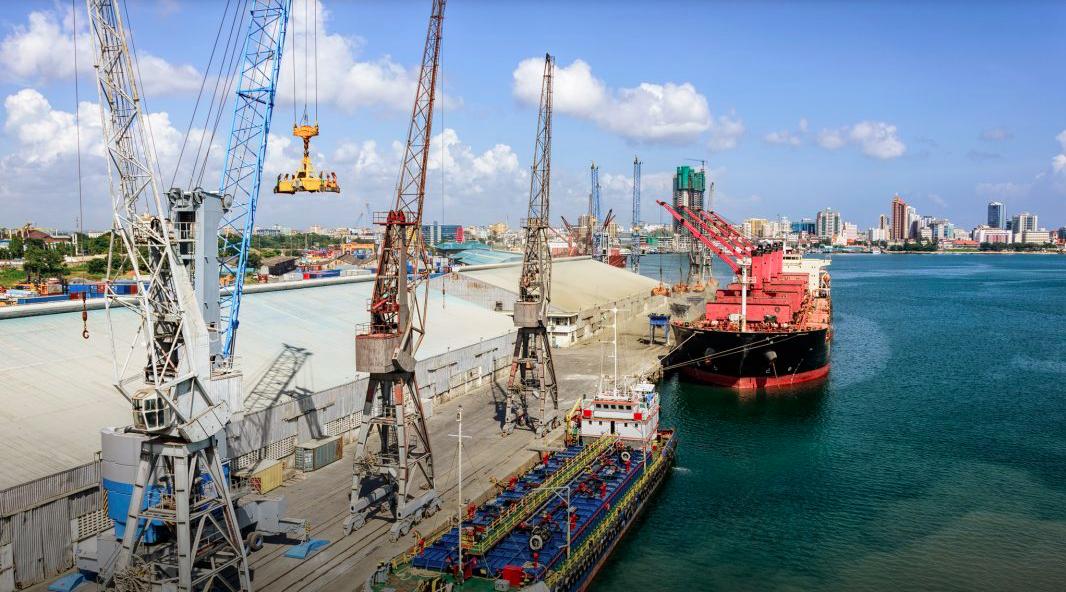 La Tanzanie agrandit son port de Dar es Salaam (ci-dessus), plutôt que de construire un nouveau port à Bagamoyo. (© Igor Grochev/Shutterstock)